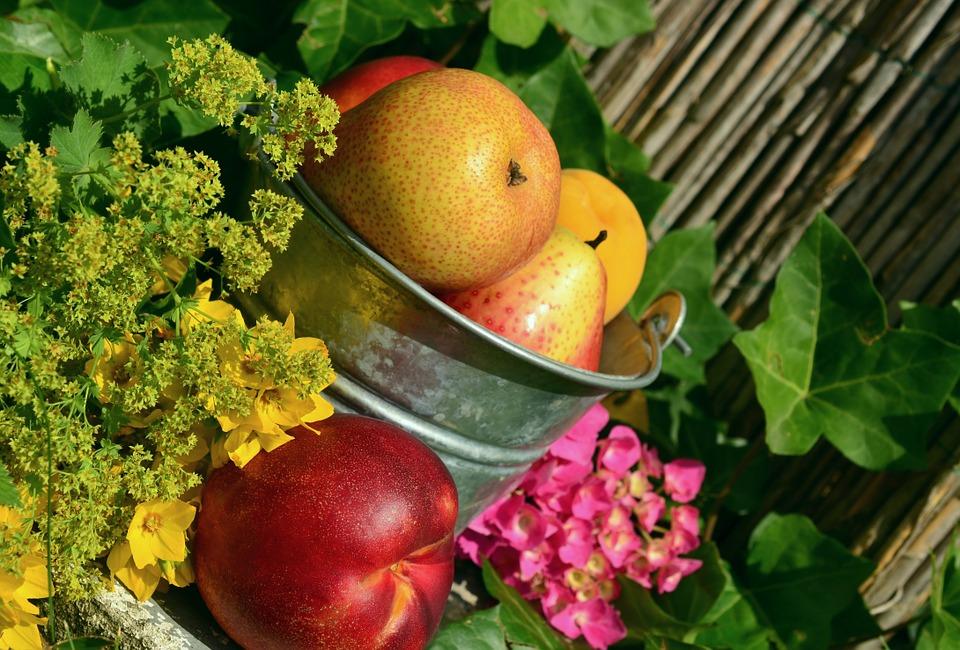 fruits-850491_960_720